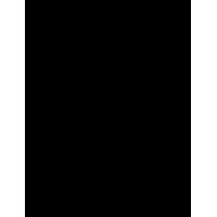AUTOCARPE - RENAULT